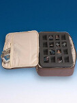 Freebooter's Fate Carrying Case