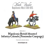 Mounted Napoleonic British Infantry Colonels (Peninsular)