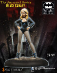 Black Canary (Animated Series)