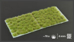 Gamer's Grass: Dry Green Tufts Wild (6mm)