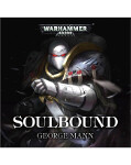 Raven Guard: Soulbound (Audiobook)